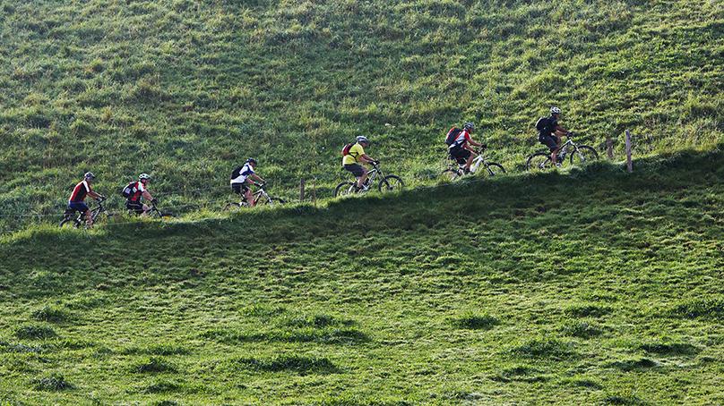 Mountainbike Gruppe beim Fahren