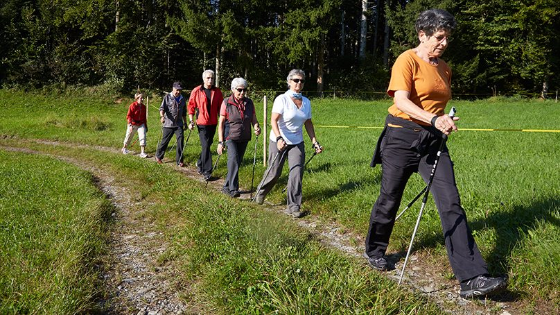 Senioren beim Nordic Walking am Wald