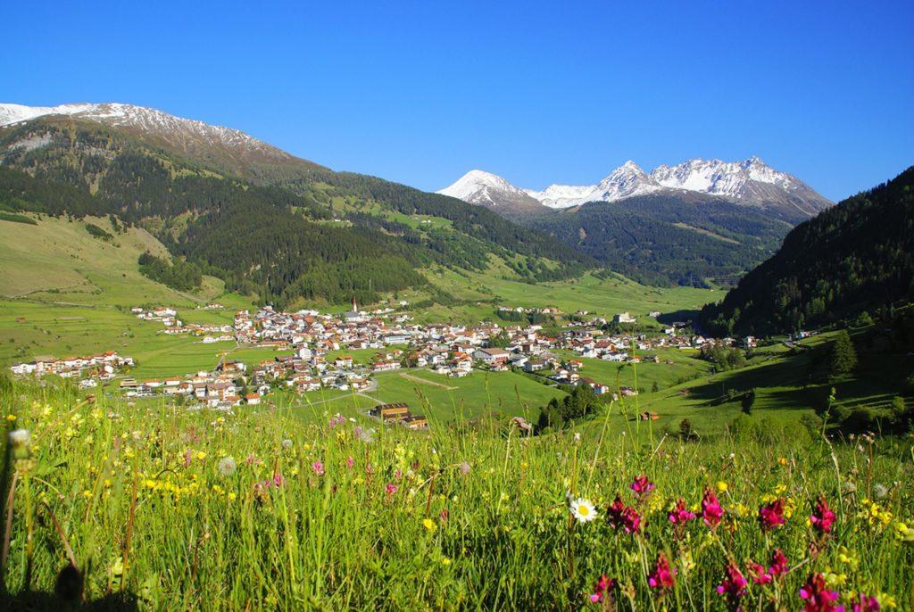 Berge und Blumenwiese